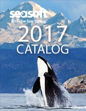 Download Latest catalog