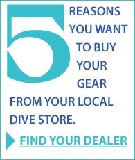 Five Reasons to use a local dealer